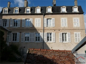 hotel particulier vendre MONTBARD -  21500  MONTBARD 290 m2 NAO827546